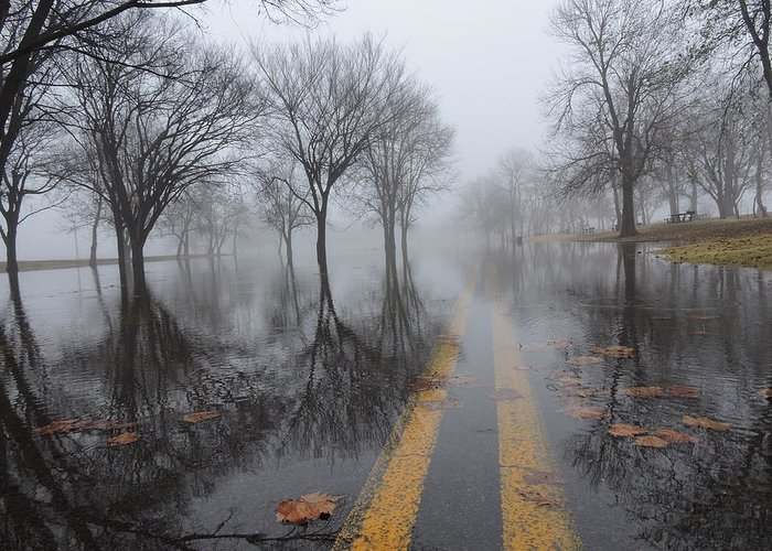 Water Greeting Card featuring the photograph Where The Road Leads by Delana Epperson