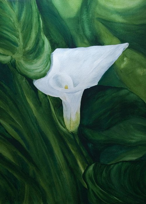 Floral Greeting Card featuring the painting White Calla by Monika Degan