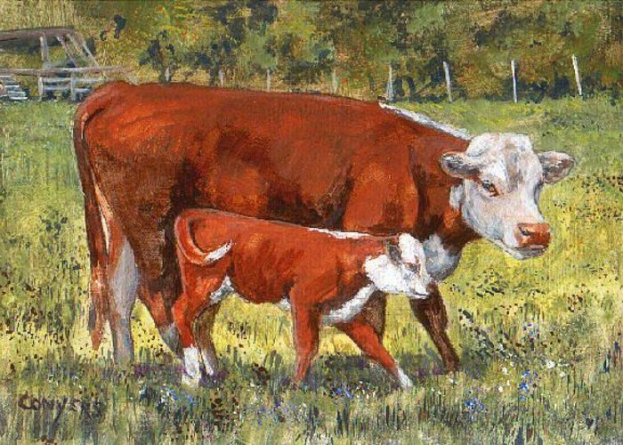 Cows Greeting Card featuring the painting White face Cow and Calf by Peggy Conyers
