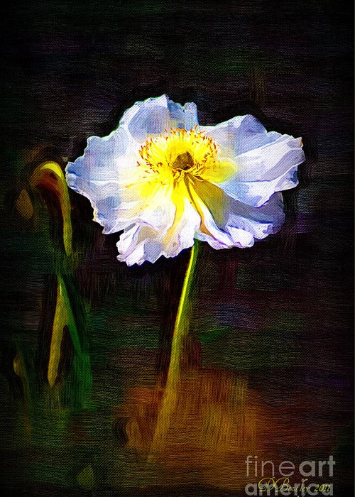 White Poppy Greeting Card featuring the photograph White Poppy by Donna Bentley