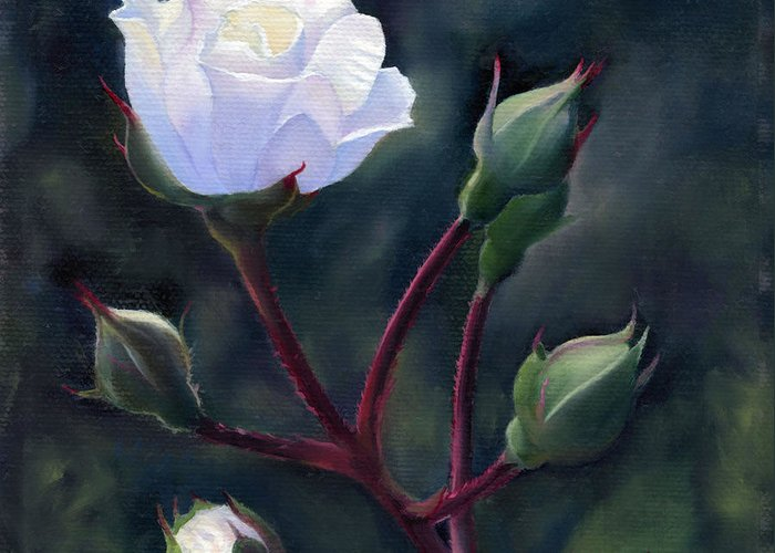 Flowers Greeting Card featuring the painting White Rose by Michael Taylor