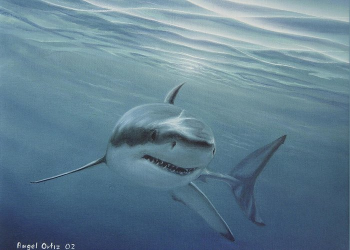 Shark Greeting Card featuring the painting White Shark by Angel Ortiz