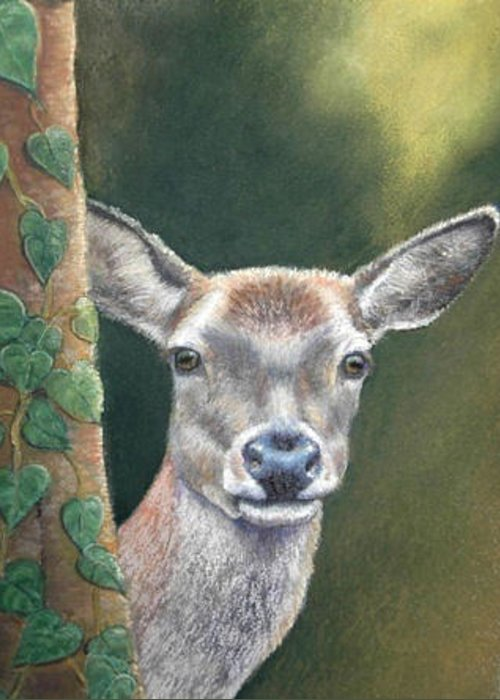 Rainforest Greeting Card featuring the painting White Tail Doe At Ancon Hill by Ceci Watson