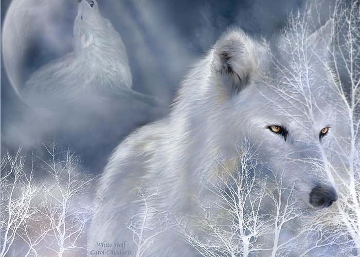Wolf Art Greeting Card featuring the mixed media White Wolf by Carol Cavalaris