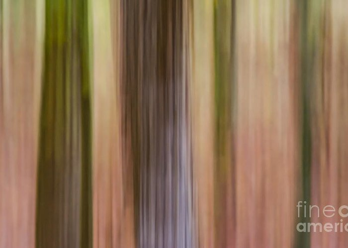 Abstract Greeting Card featuring the photograph Whiteoak Center by M E Cater
