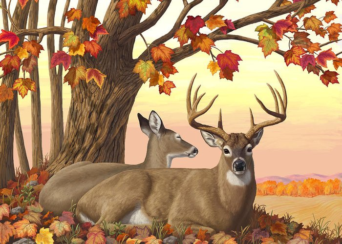 Trophy Buck Greeting Cards