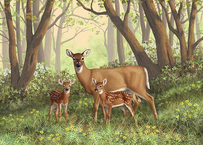 Whitetail Deer Greeting Card featuring the painting Whitetail Doe And Fawns - Mom's Little Spring Blossoms by Crista Forest