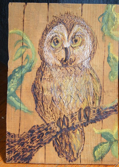 Owls Woodburns Nature Greeting Card featuring the pyrography Whooooo Me by Margaret G Calenda