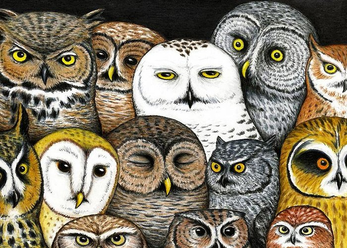 Owl Art Greeting Cards