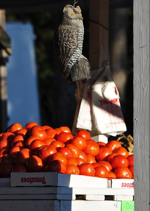 Still Life Greeting Card featuring the photograph Who's Tomatoes by Jan Amiss Photography