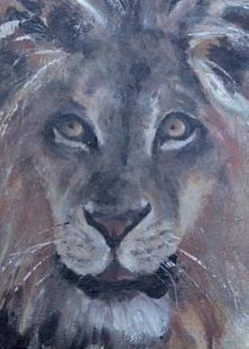 Lion At The Wild Animal Park Greeting Card featuring the painting Wild Animal Park Lion by Bryan Alexander