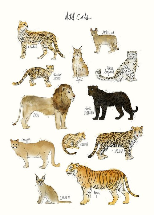 Wild Greeting Card featuring the painting Wild Cats by Amy Hamilton