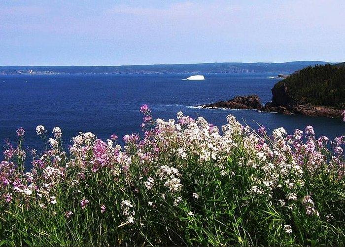 Photograph Iceberg Wild Flower Atlantic Ocean Newfoundland Greeting Card featuring the photograph Wild Flowers And Iceberg by Seon-Jeong Kim