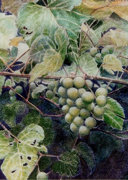 Green Greeting Card featuring the painting Wild Grapes by Constance Drescher