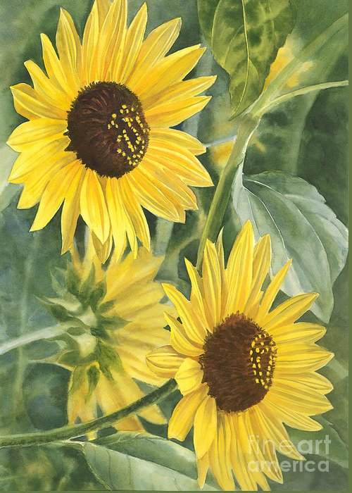 Sunflower Greeting Card featuring the painting Wild Sunflowers by Sharon Freeman