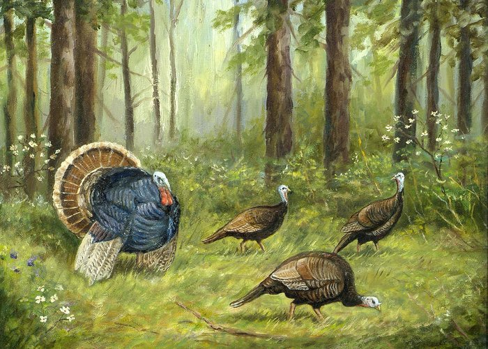 Nature Greeting Card featuring the painting Wild Turkey by Michael Scherer