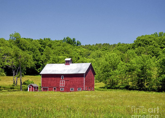 Barn Greeting Card featuring the photograph Wildflowers Barn by Rod Best