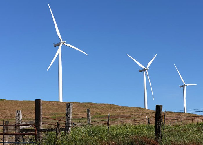 Ear Skies Greeting Card featuring the photograph Wind Energy Wind Turbines In A Field Washington State. by Gino Rigucci
