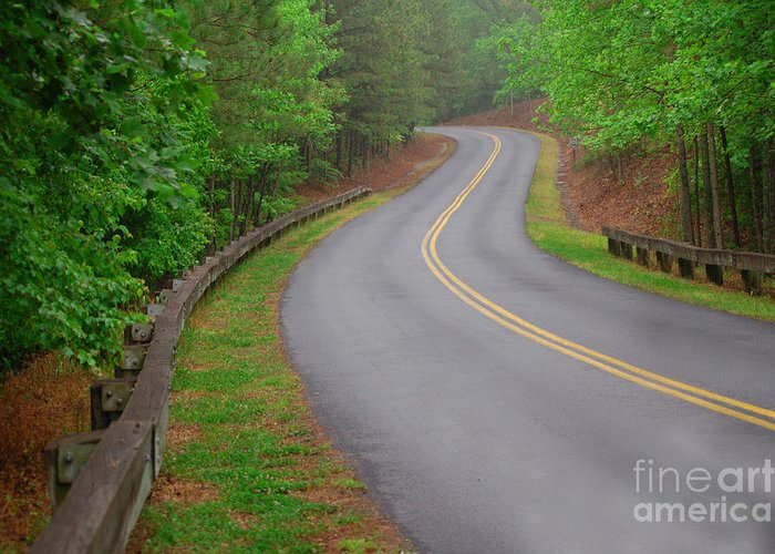 Nature Greeting Card featuring the photograph Winding Road by David Smith