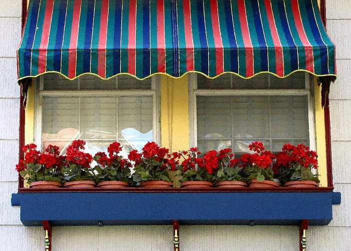 Window Box Greeting Card featuring the photograph Window Box Geraniums by Colleen Kammerer