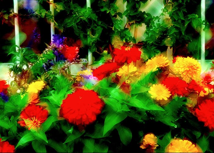 Flowers Greeting Card featuring the photograph Window Box Of Flowers by Gary Brandes