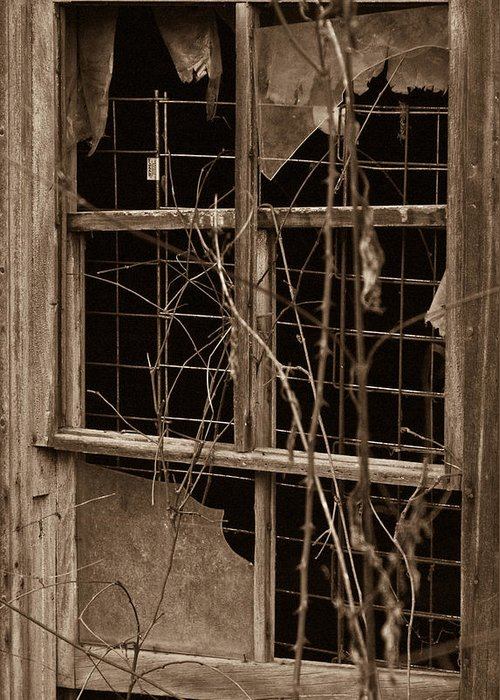 Window Greeting Card featuring the photograph Window Of A Forgotten Mystery by Douglas Barnett