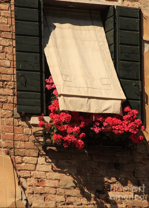 Venice Greeting Card featuring the photograph Window With Flowers In Venice by Michael Henderson