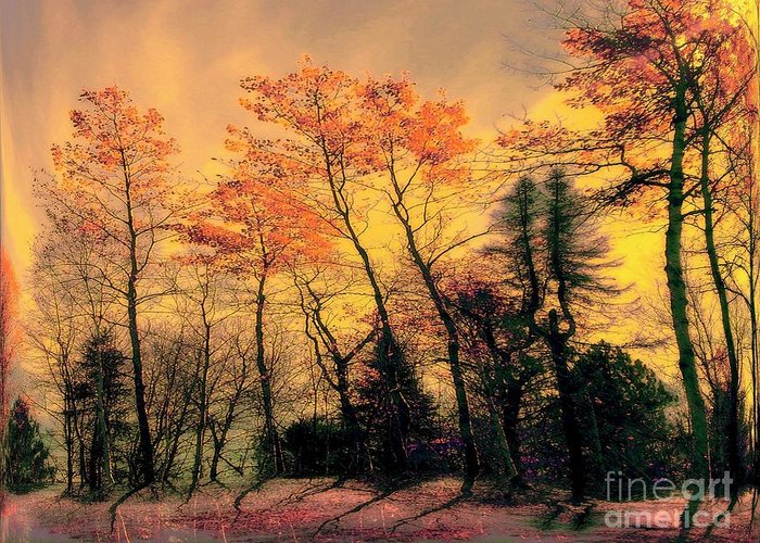 Sundown Greeting Card featuring the photograph Windy by Elfriede Fulda