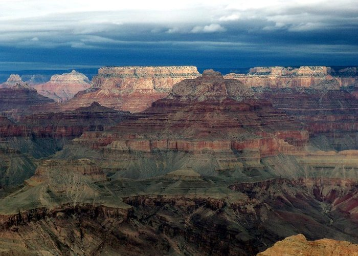 Grand Canyon National Park Greeting Card featuring the photograph Winter Approaching by Carrie Putz