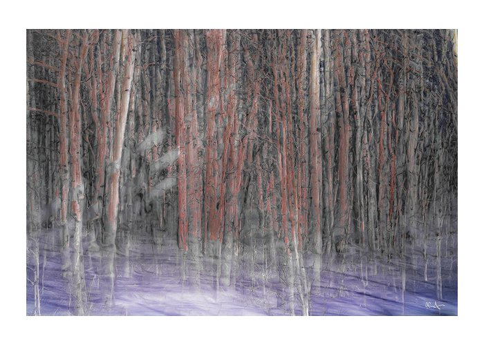 Landscape Greeting Card featuring the photograph Winter Aspen by Dean Arneson