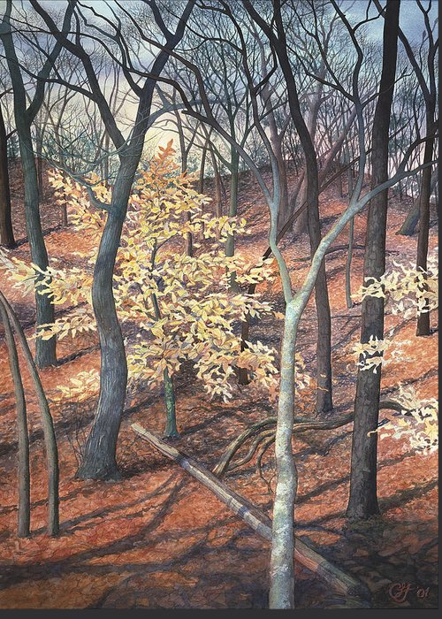 Trees Greeting Card featuring the painting Winter Beech by Craig Gallaway