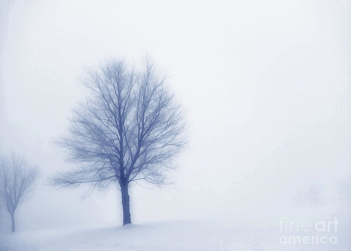 Winter Greeting Card featuring the digital art Winter Blues by Randy Steele