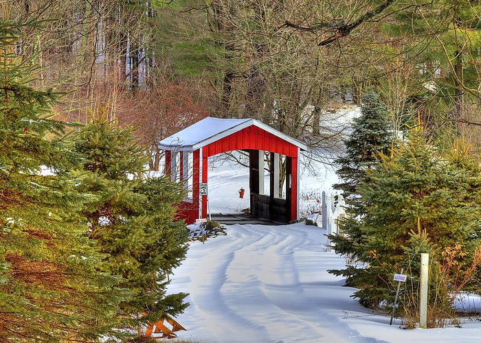 Bridge Greeting Card featuring the photograph Winter Crossing by Evelina Kremsdorf