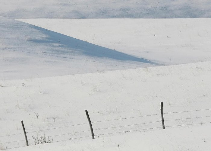Barbed Wire Greeting Card featuring the digital art Winter Day On The Prairies by Mark Duffy
