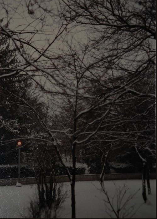 Lights Greeting Card featuring the photograph Winter Dusk by Rob Hans