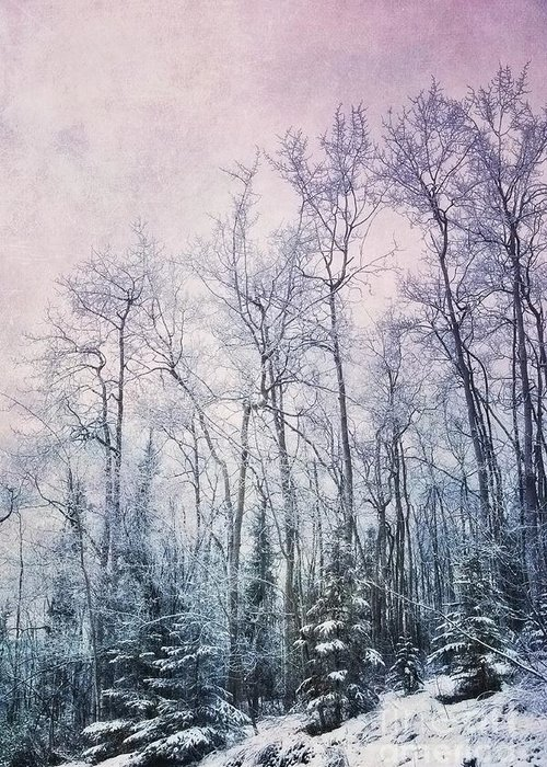 Frost Photographs Greeting Cards