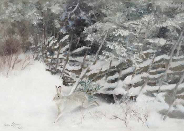 Bruno Liljefors Greeting Card featuring the digital art Winter Hare At The Fence by Mark Carlson