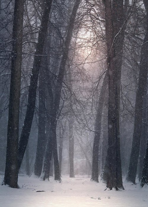 Greeting Card featuring the photograph Winter Hush by Rob Blair