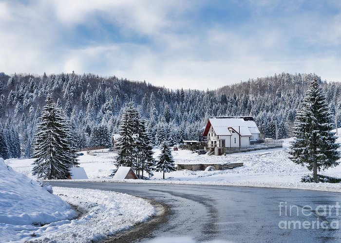 Winter Greeting Card featuring the photograph Winter Lands by Gabriela Insuratelu