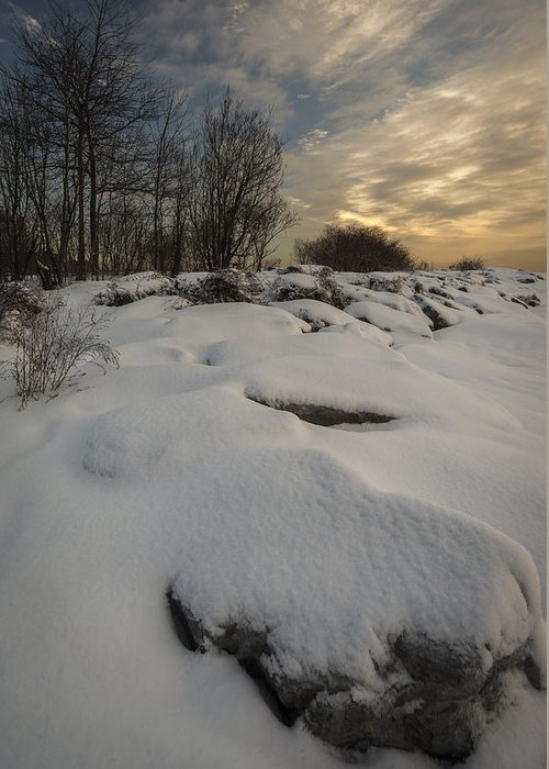 Canada Greeting Card featuring the photograph Winter Morning by David Hook