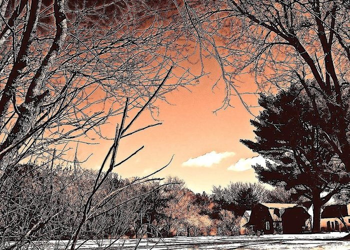 Greeting Card featuring the photograph Winter Pastel by Elizabeth Tillar