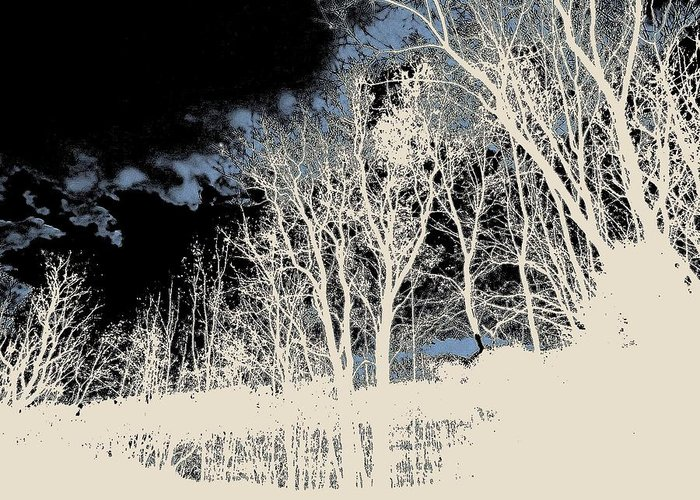 Greeting Card featuring the photograph Winter Prelude by Elizabeth Tillar