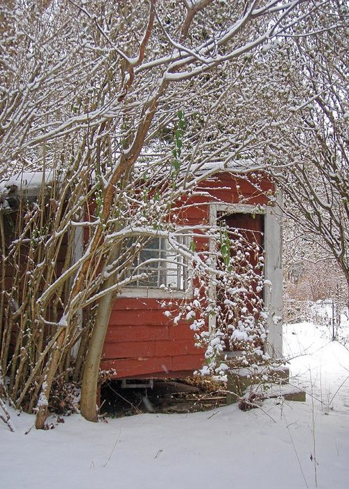 Shed Old Red Snow Greeting Card featuring the photograph Winter Reading Room by Kristine Nora