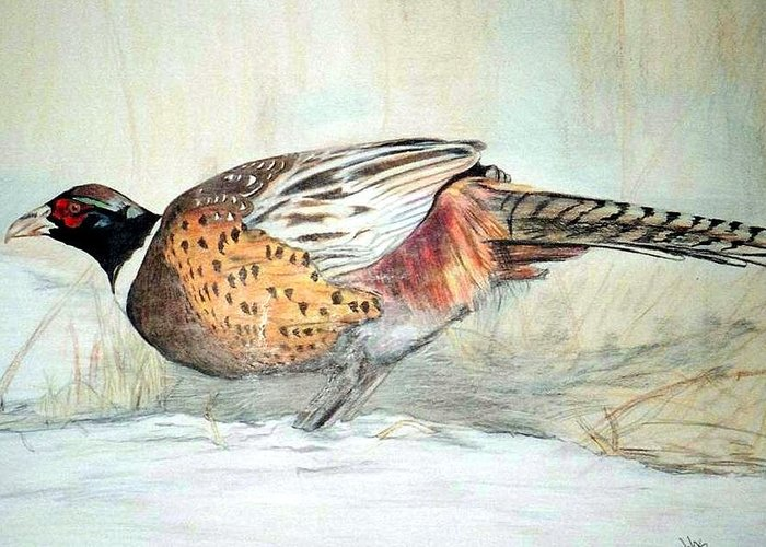 Ringneck Pheasant Greeting Card featuring the painting Winter Ringneck by Debra Sandstrom