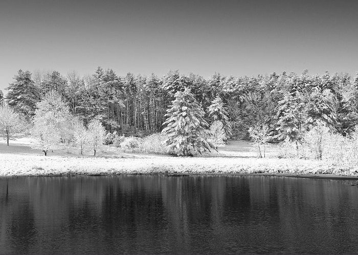 Winter Greeting Card featuring the photograph Winter Scene 2 by Edward Myers