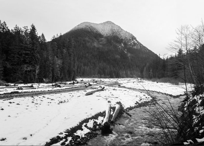 Black And White Greeting Card featuring the photograph Winter Snow, Carbon River, Washington, 2016 by Steve G Bisig
