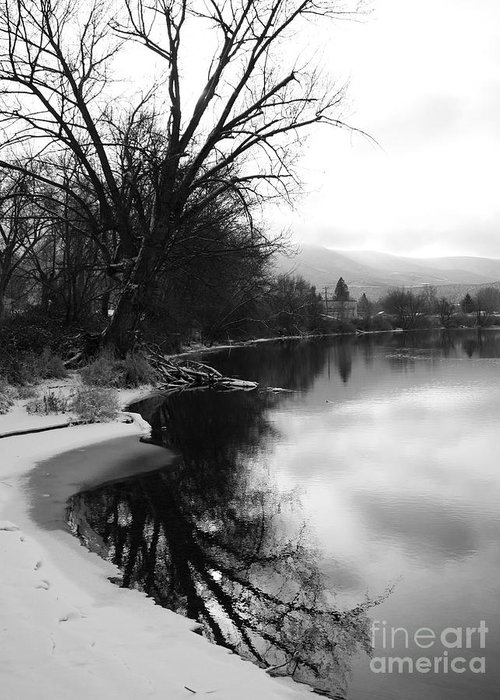 Black And White Greeting Card featuring the photograph Winter Tree Reflection - Black And White by Carol Groenen