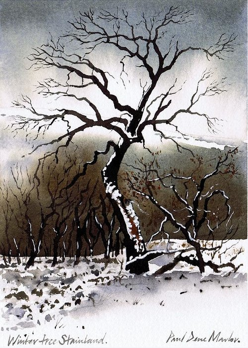 Winter Tree Greeting Card featuring the painting Winter Tree Stainland by Paul Dene Marlor