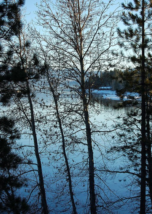 Photography Greeting Card featuring the photograph Winter Water Blues by Heather S Huston
