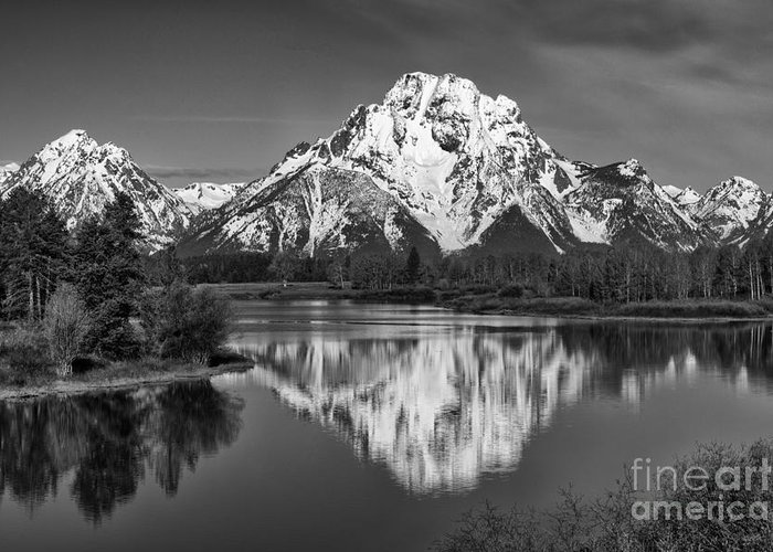 Black & White Greeting Card featuring the photograph Winter's Last Hold by Sandra Bronstein